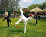 Ukázky cvičení žáků Taiji Akademie